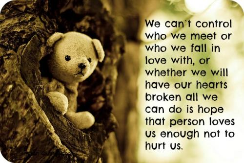 We can't control who we meet or who we fall in love with, or whether we will have our hearts broken all we can do is hope that person loves us enough not to hurt us.