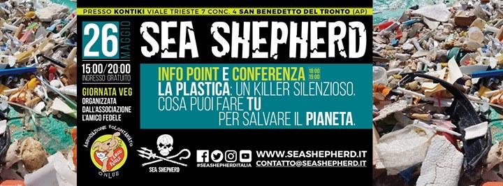 Sea Shepherd A Sbenedetto Del Tronto Ap 2605 Sea Shepherd