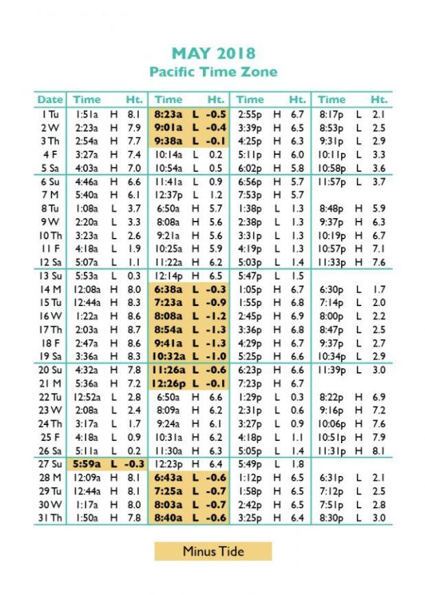 Tide Charts Puget Sound Rebellions