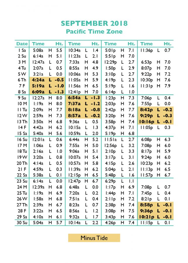 Tide Tables For Fishing Cape Town Microfinanceindia