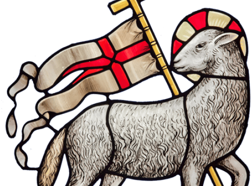 Meno the Lamb – Epiphany 2A