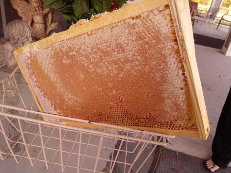 Late season honey