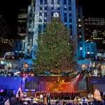 Things to Do in New York in December