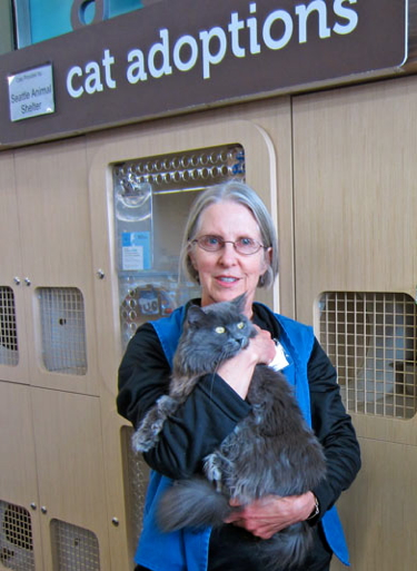 Volunteer Charlotte with an adoptable cat at Petco.