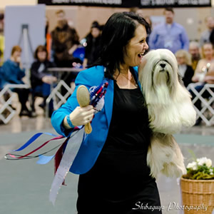 McLaughlin is all smiles after her big win with Madonna. This was the 2-year-old dog's first best-in-show triumph to go along with four Non-Sporting group top placements.