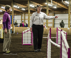Lori Sage, of Oregon City, Ore., one of two judges at the inaugural The Masters Agility Championship at Westminster in New York City Feb. 8, briefs Desiree Snelleman, of Sumner, on the rules before she and Pace, a border collie, begin a competition run at a December trial in Auburn. Pace won the 2013 American Kennel Club National Agility Championship at the 26-inch division.