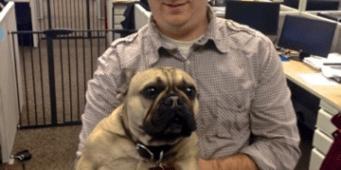 Seattle Dog Friendly Business: Trupanion