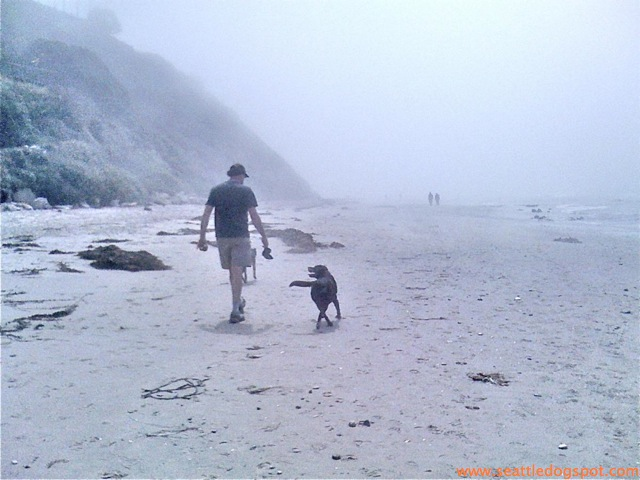 Dylan and I walk into the mist. Photo from Seattle DogSpot.