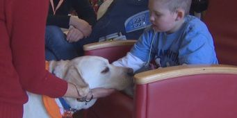 Seattle Children's Hospital to expand its therapy dog program