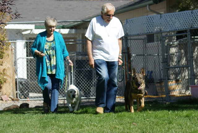 Wiley was adopted last fall. Here he is with his new family. Photo from Safe Haven Rescue Kennel.