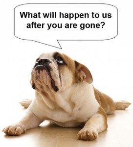 Estate Plan for Pets
