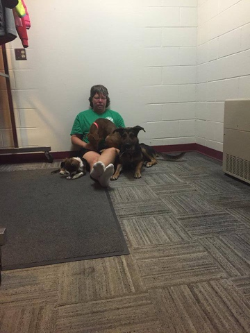WASART Volunteers are working hard to care for pets separated from their families due to Washington wildfires. This volunteer was up at 4 AM to comfort some of the dogs. Photo from WASART.