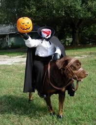 Headless Horseman Dog Costume