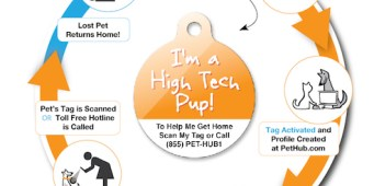 PetHub giving away free digital ID tags through end of November