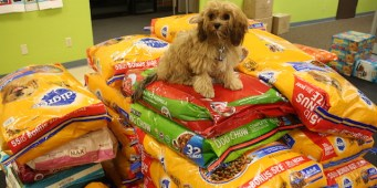 Trupanion donates 6 tons of pet food to local animal shelters