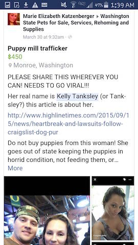 Another warning about buying puppies from Kelly Tanksley.
