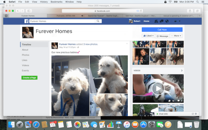May 14, 2016 another announcement from Furever Homes saying the group has new puppies even though on April 15.