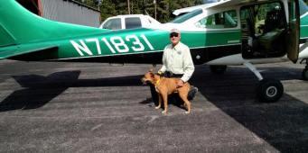 Volunteers escort Washington dog back home from Michigan