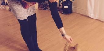 Kindness Quotients: Dog Trainer Quicksand