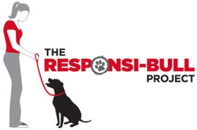 Responsi-Bull Project