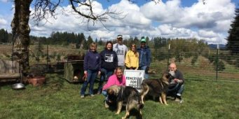 ASPCA Grant Will Fund Oregon and Washington Groups to Build Fences For Chained Dogs in SW Washington