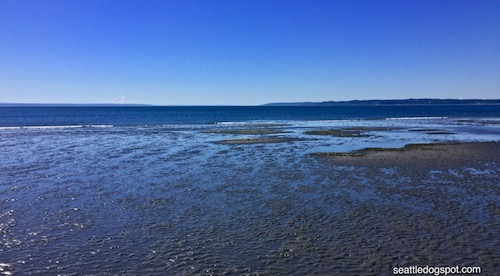 Looking into the Puget Sound from Whidbey Island