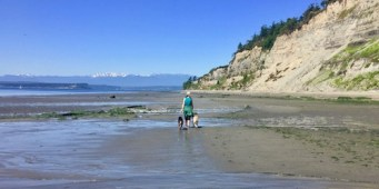 Double Bluff Beach on Whidbey Island is Washington's Best Off-Leash Area