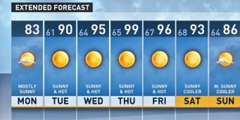 Protect Your Dog from Scorching Temperatures Predicted for Seattle Area This Week