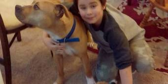 Grays Harbor County Judge to Determine Whether Beloved Dog Will Live or Die