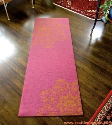 Yoga Mats for Old Dogs