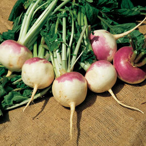turnip-soup-for-treating-cold-flu-sore-throat