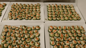 cucumber_rounds_with_dill_cream_cheese_and_lox_seattles_best_catering