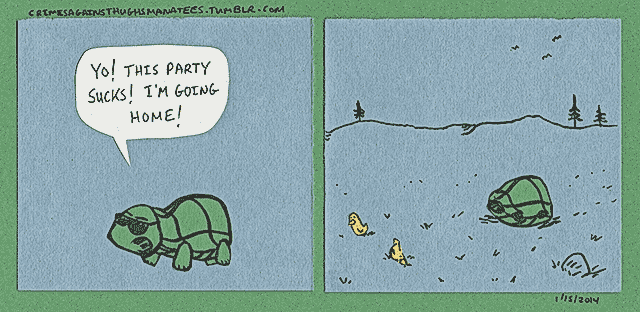 manatees-turtle