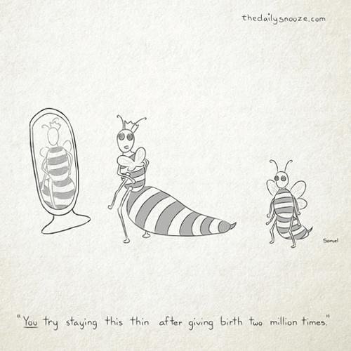 """Snooze-Queen_Bee"""" width="""