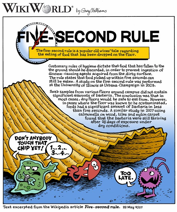 Five_second_wikiworld