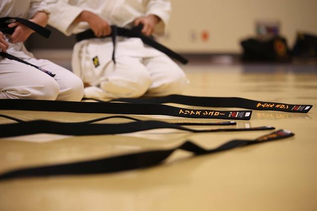 black-belt-894190_640