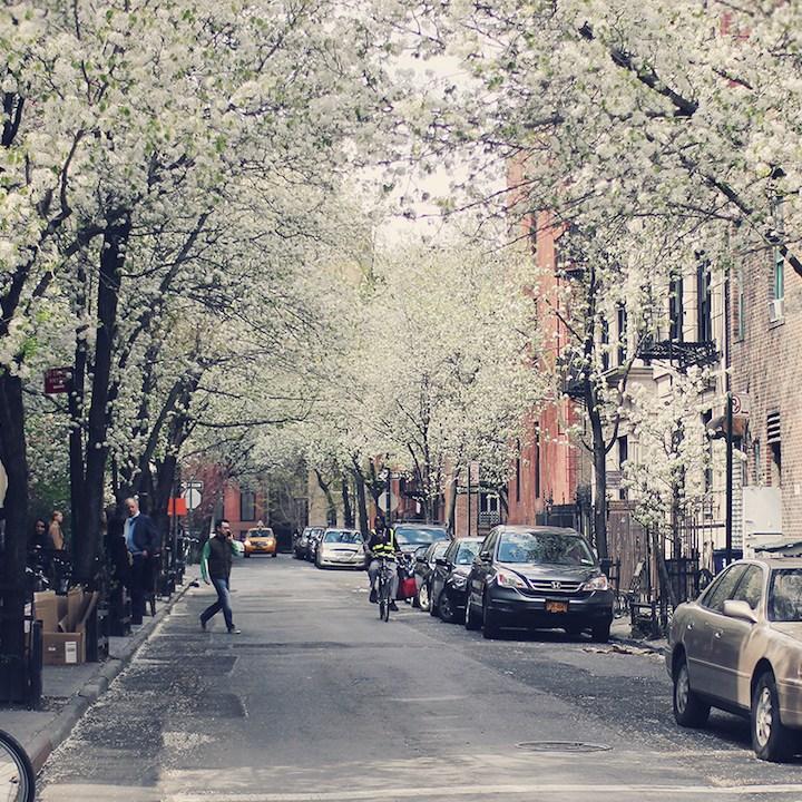 City Springtide