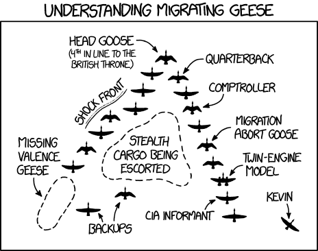 migrating_geese