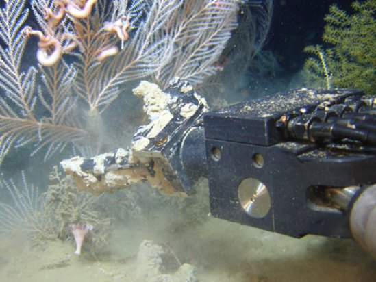 SeaView Systems SeaEye Falcon DR ROV manipulator arm in action during a NOAA mission in 2008