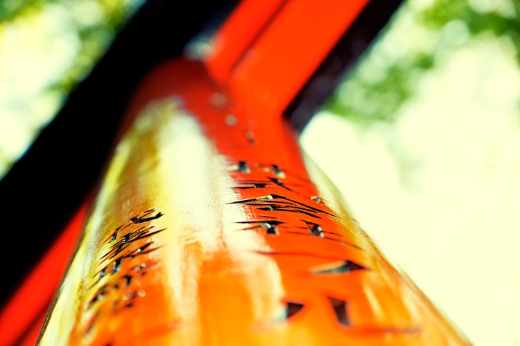 Fushimi Inari5