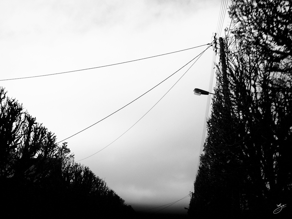 002 - Arbres connectés - 26/10/2015