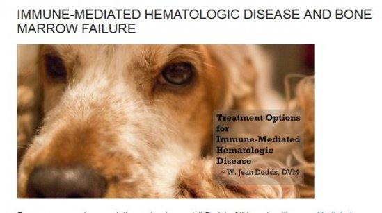 Dr. Dodds IMHA Treatment Options