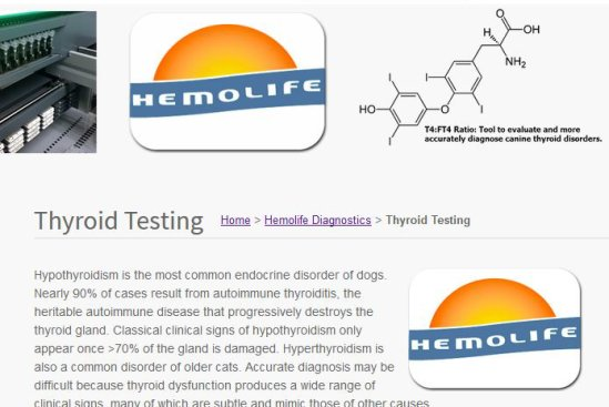 Hemopet Thyroid Testing