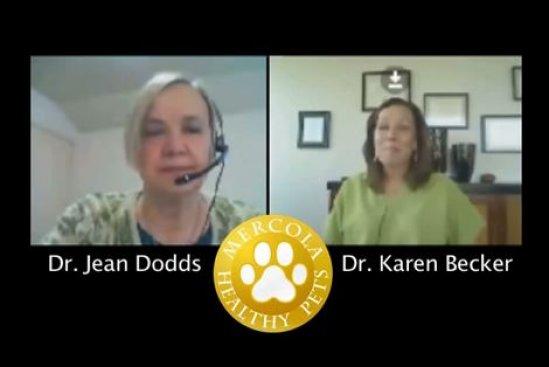 Dr. Dodds: Hidden Signs of Hypothyroidism Part 1