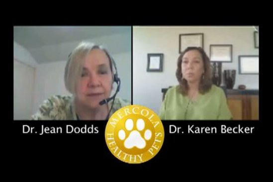 Dr. Dodds: Hidden Signs of Hypothyroidism Part 2