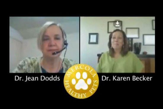 Dr. Dodds: Hidden Signs of Hypothyroidism Part 1
