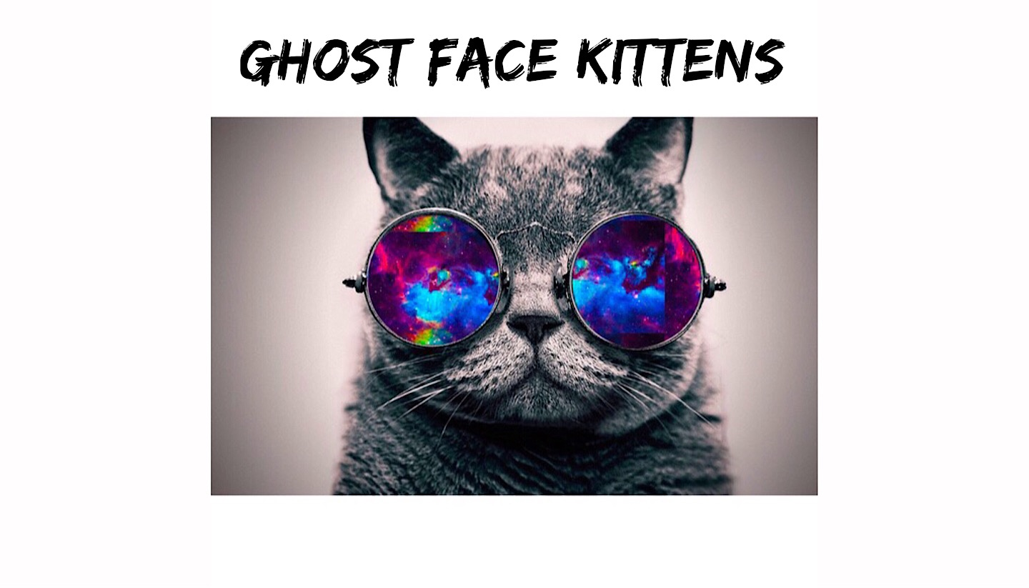 Ghost Face Kittens & Guest