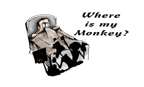 Where is my Monkey?