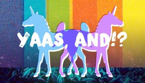 Yaas, And!?