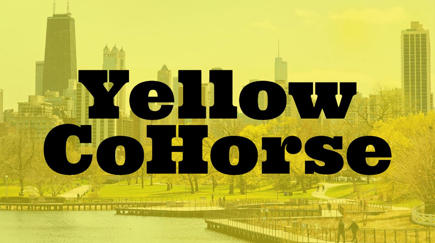 Yellow CoHorse